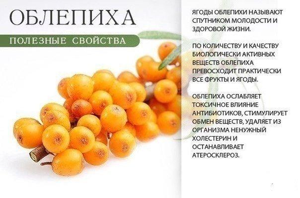 Польза оранжевых продуктов