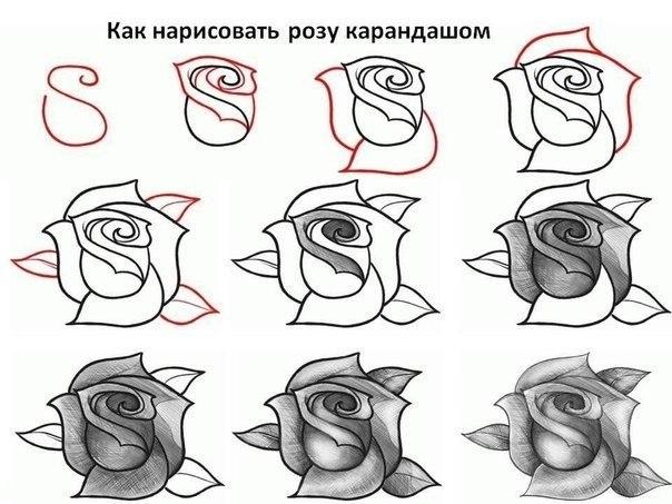 bSCtejCYoqY