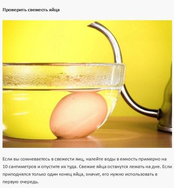 10 кухонных советов9