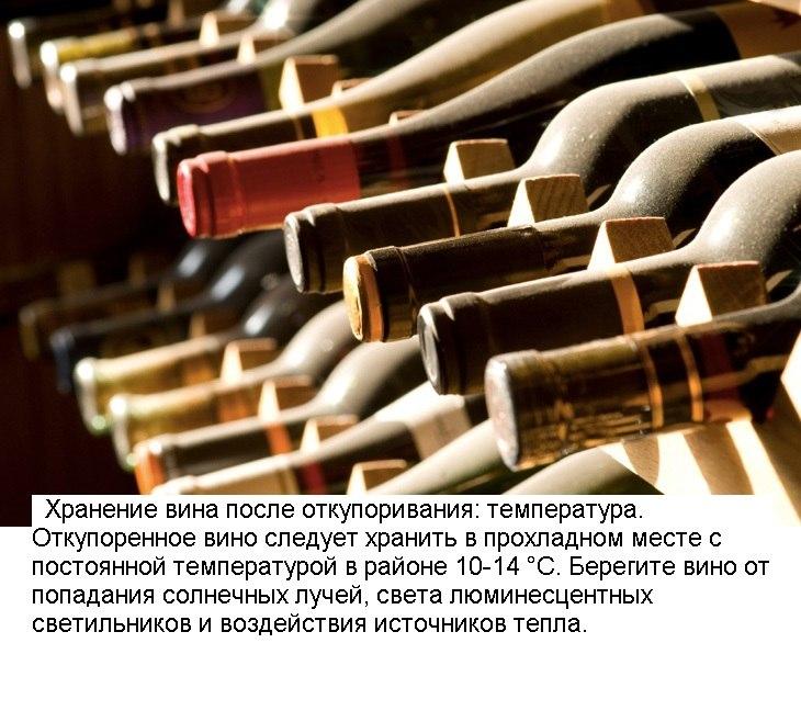 10 лайфхаков для любителей вина