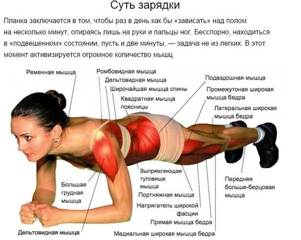 Лучшее упражнение на все времена