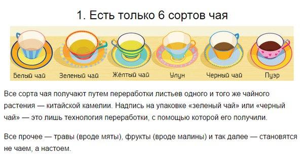 123481819_Veschi_kotoruye_vuy_ne_znali_o_tom_kak_pit_chay