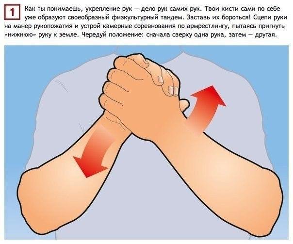 Простые упражнения, тренирующие мышцы рук