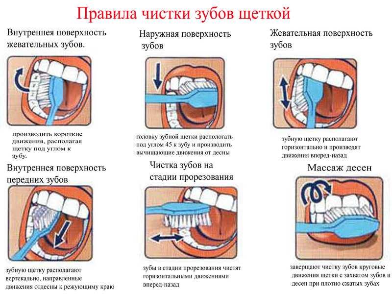 Чистим зубы правильно в картинках