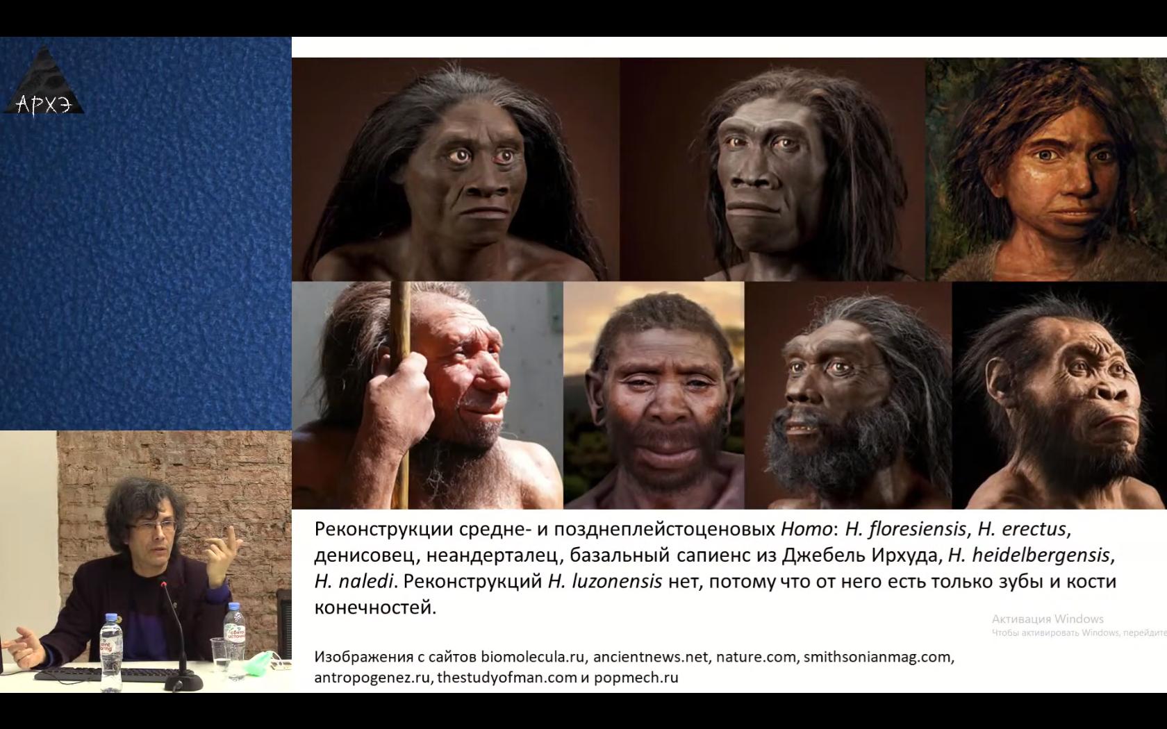 Проповеди об эволюции: интересности 2020 года