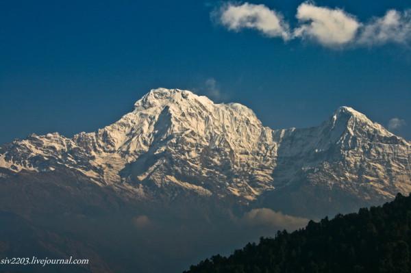 Nepal_0541
