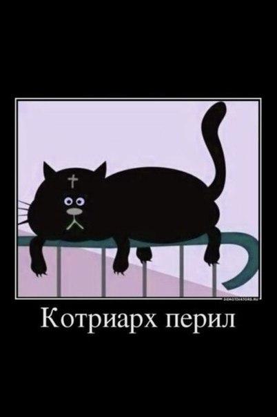 kotriarh