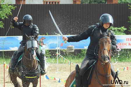 1311613186_horse_30