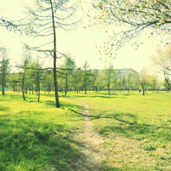 Парк Гвардейский