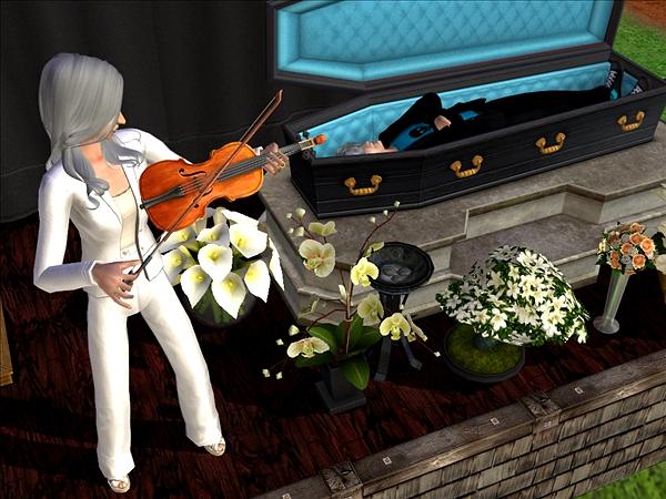 Jennicor violin