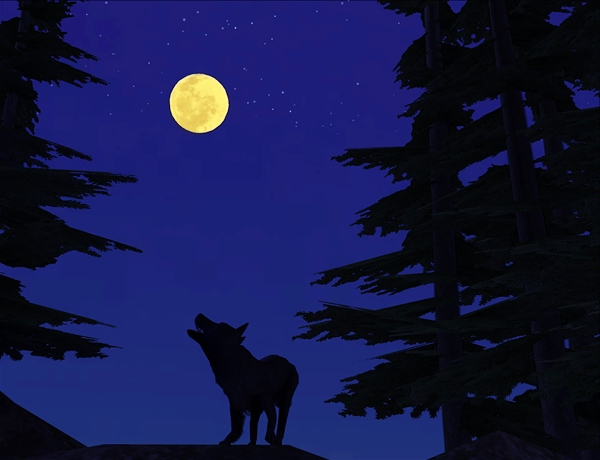 wolf silo