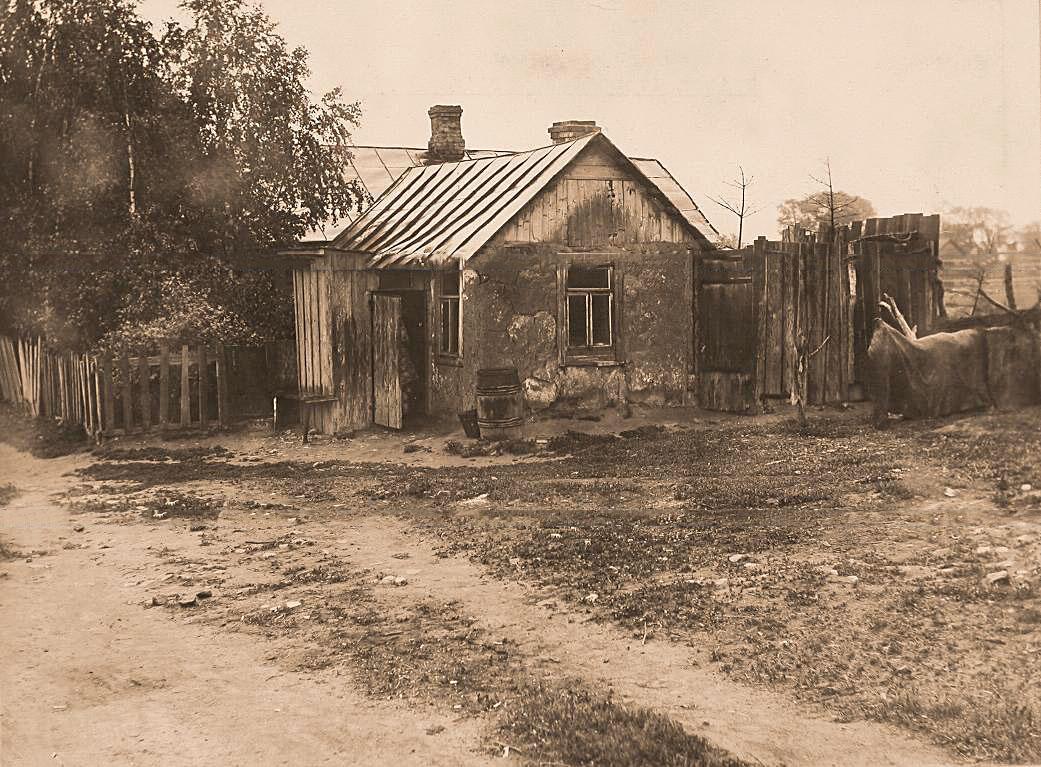 12Общий вид дома Иванова с прилегающими садом и двором