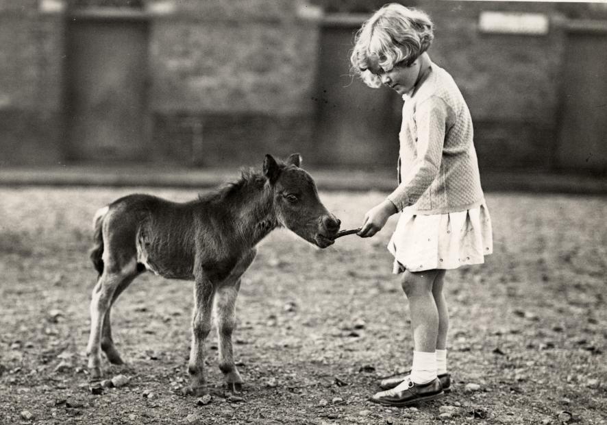 Девочка и жеребенок, Лондон, Великобритания, 1935.