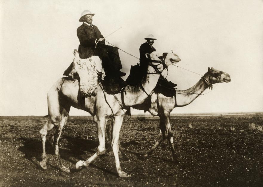 Президент США Рузвельт на верблюде в пустыне около Хартума, 1910.