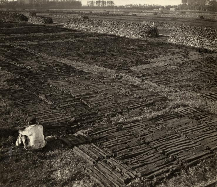 Резка торфа, пригород Роттердама, Нидерланды, 1918.