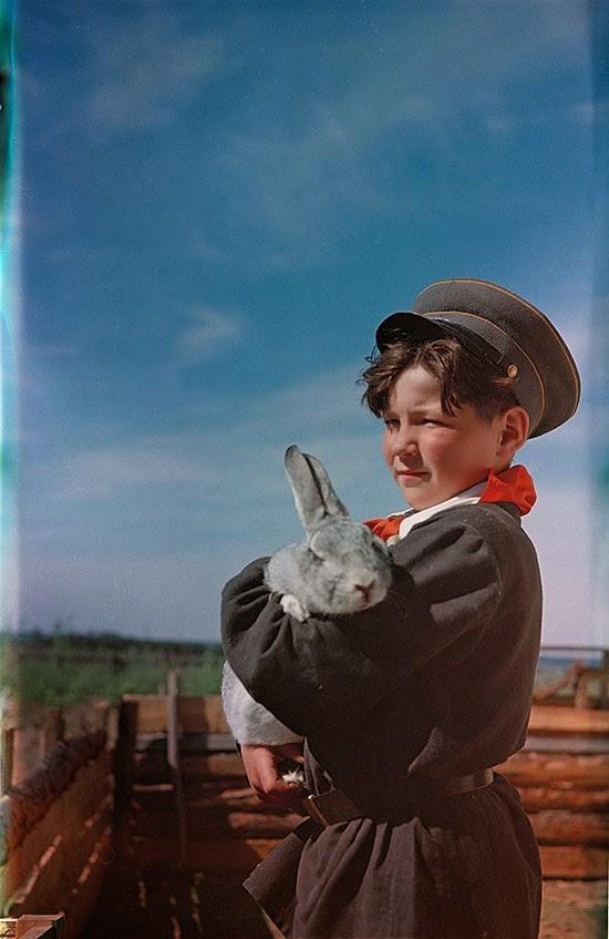 03«Бригадир кролиководов школьного колхоза», 1958 год.