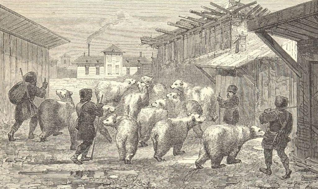 1862. Сибирь. Медведи проходят через село - копия