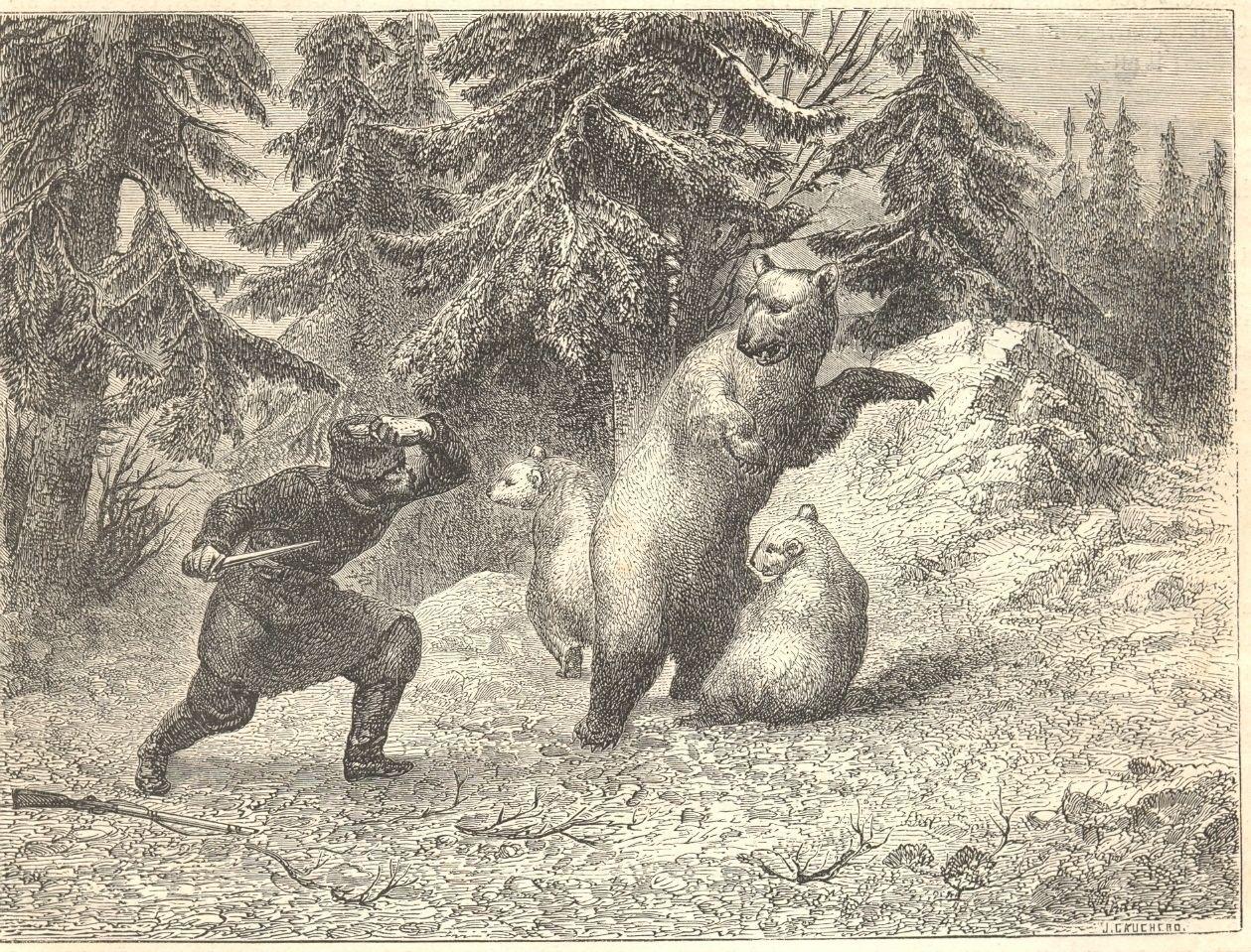 0_f1d87_35dbd8b2_XXXL1862. Схватка охотника с медведями