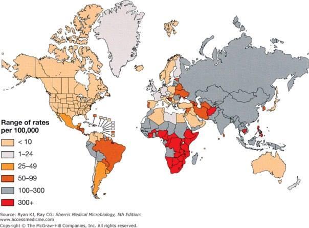 распространение туберкулеза в мире