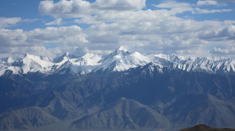 Скорее всего Гималаи, но это не точно, у меня фото не подписано, а гугл поиск тупит.