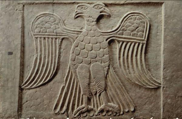 eagle5-1