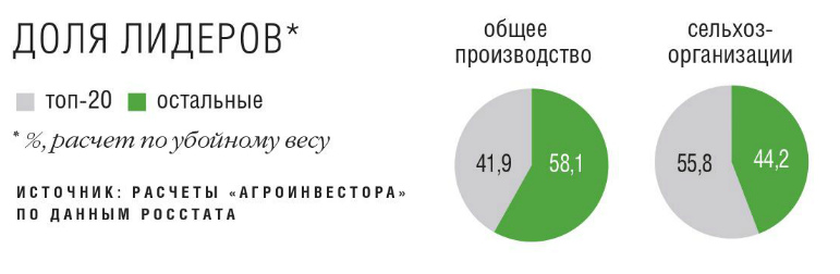 Доля лидеров в рейтинге ТОП-20 крупнейших производителей мяса в России