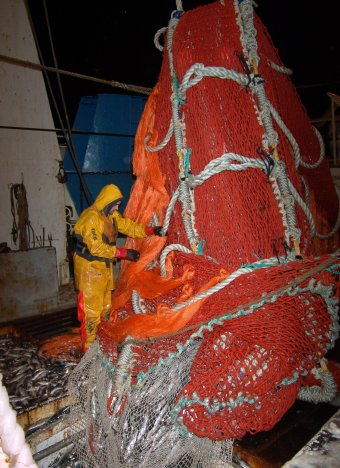 120 тысяч тонн береговых инвестиционных квот не хватит на все проекты желающих капитализировать рыбные миллиарды