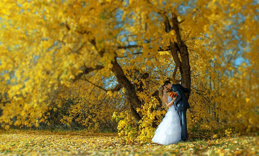Свадьба_00001