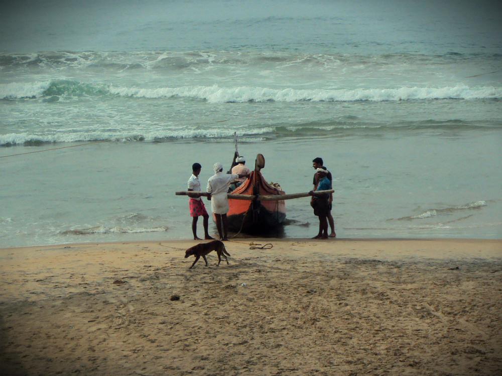 Индия. Рыбаки1