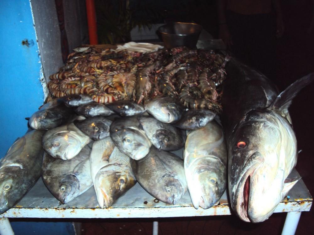 Индия. Рыбаки36