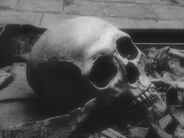 череп.jpg