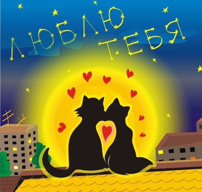 Четырехлетием, картинки с котиками я тебя люблю