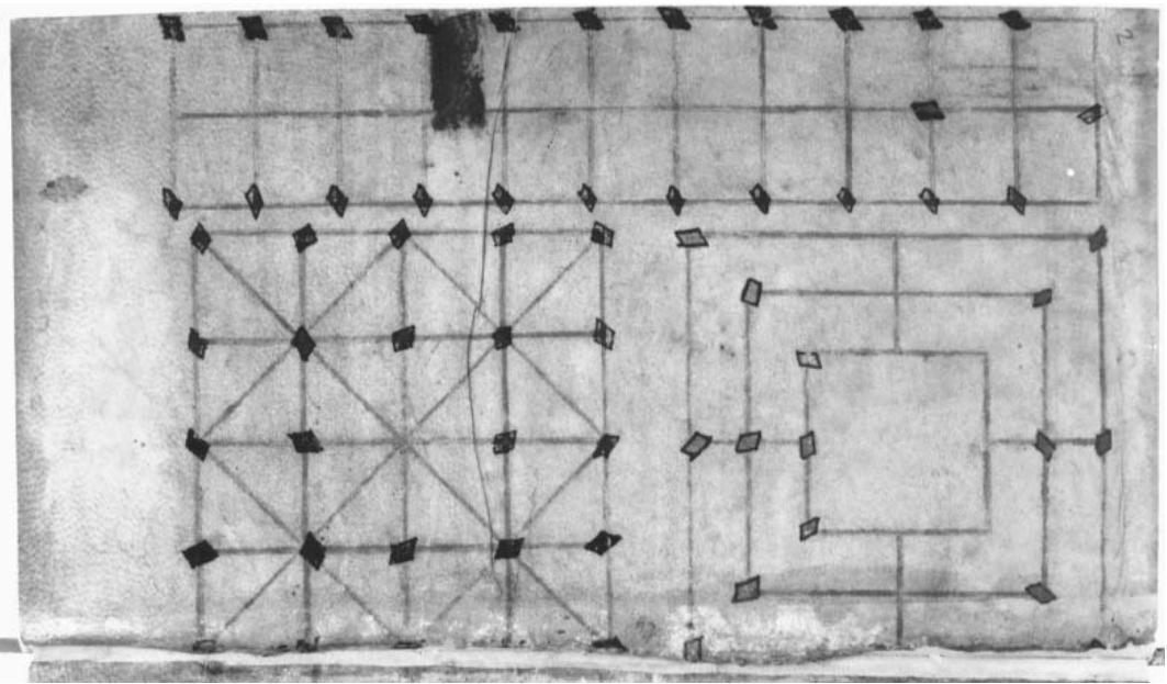 Страница из манускрипта MS O.2.45 с изображением поля дальдозы (?)