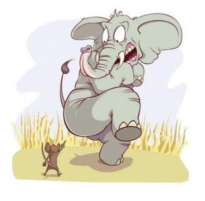 elephant-n-mouse