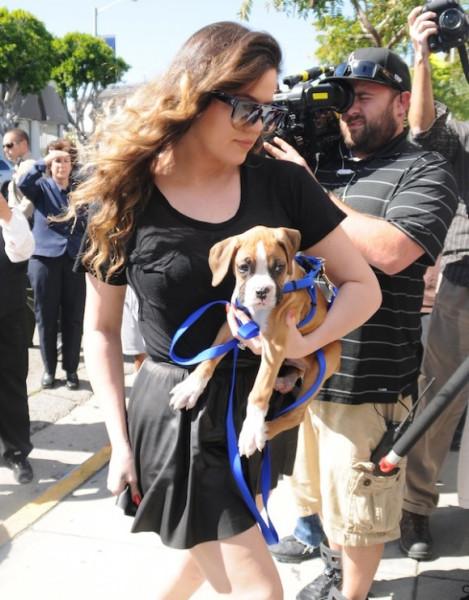 Khloe-Kardashian-Lamar-Odom-Puppy-Bernhard-Hopkins-BHop-12-580x741