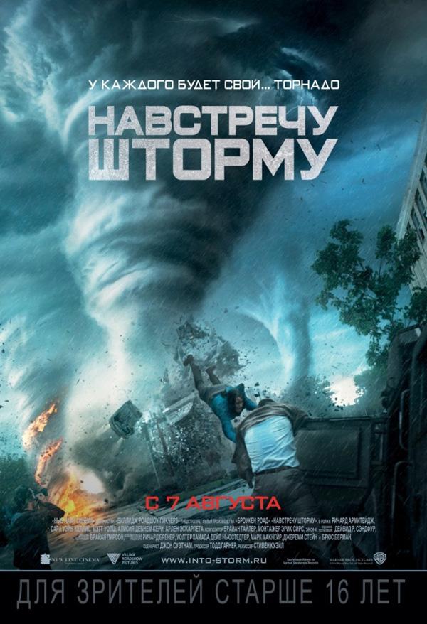 intothestorm_poster2