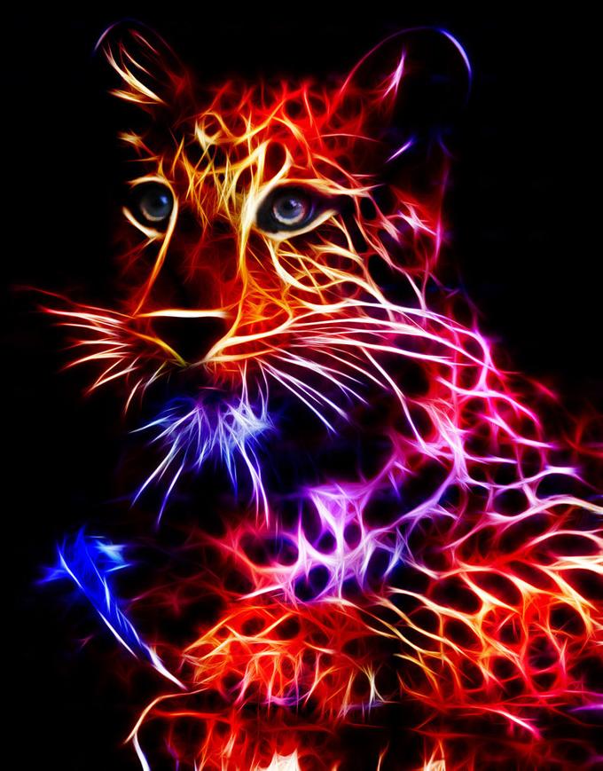 fractal_chinese_tiger_by_minimoo64-d4p9o9b