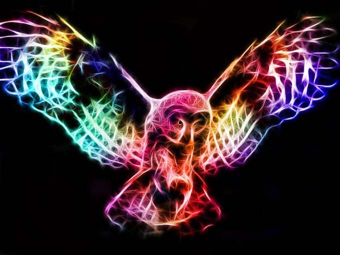 fractal_owl_in_flight_by_minimoo64-d4ai36u