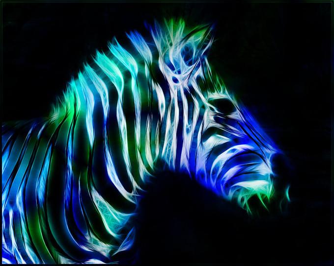 Fractal_Zebra_by_minimoo64