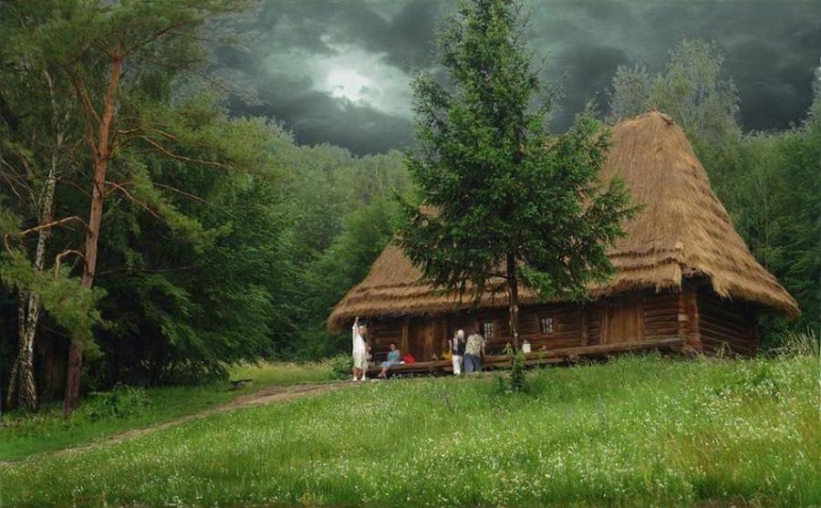 houseinwood07