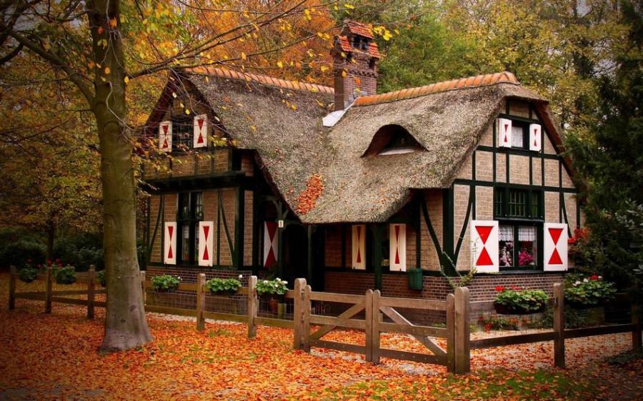 houseinwood08