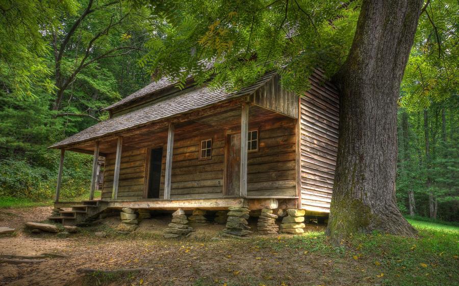 houseinwood12