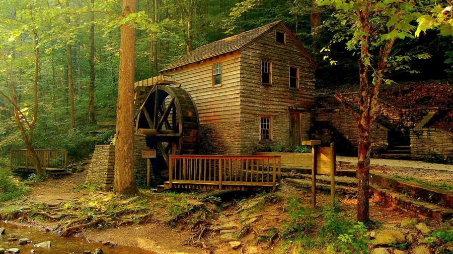 houseinwood13