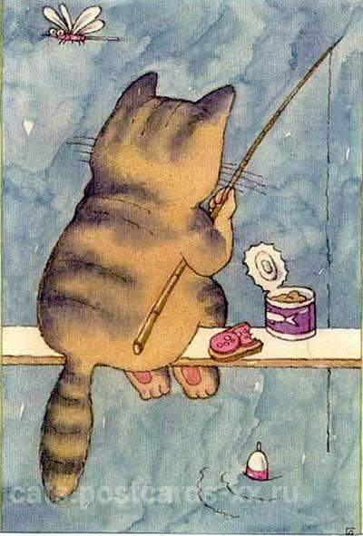 котик ловит рыбку скачать торрент - фото 3