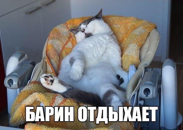 _PBpHZImliQ