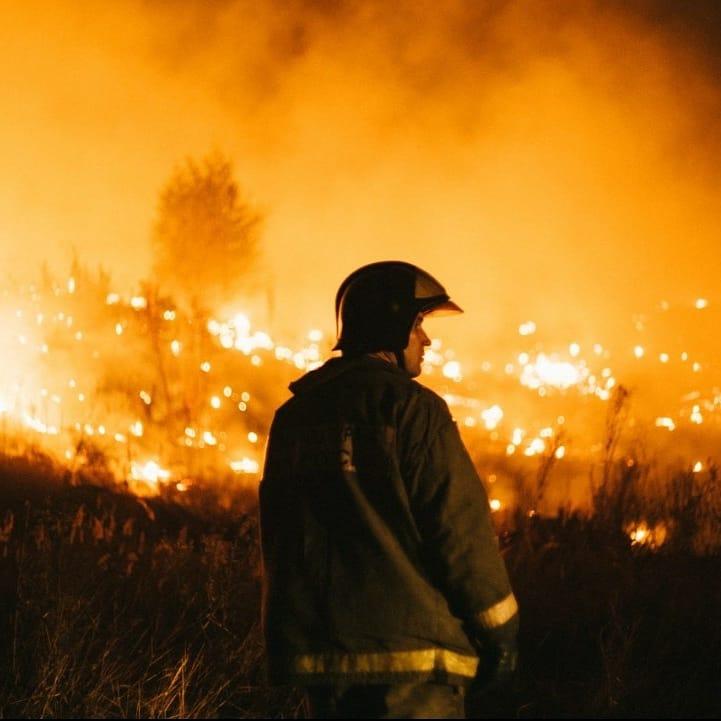 МЧС не успевает тушить пожары, соседние области пришли на помощь воронежцам.