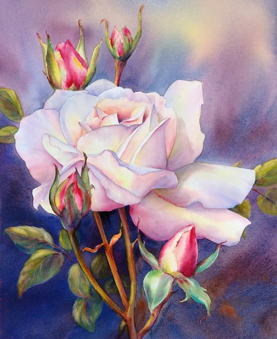 63240973_Rose