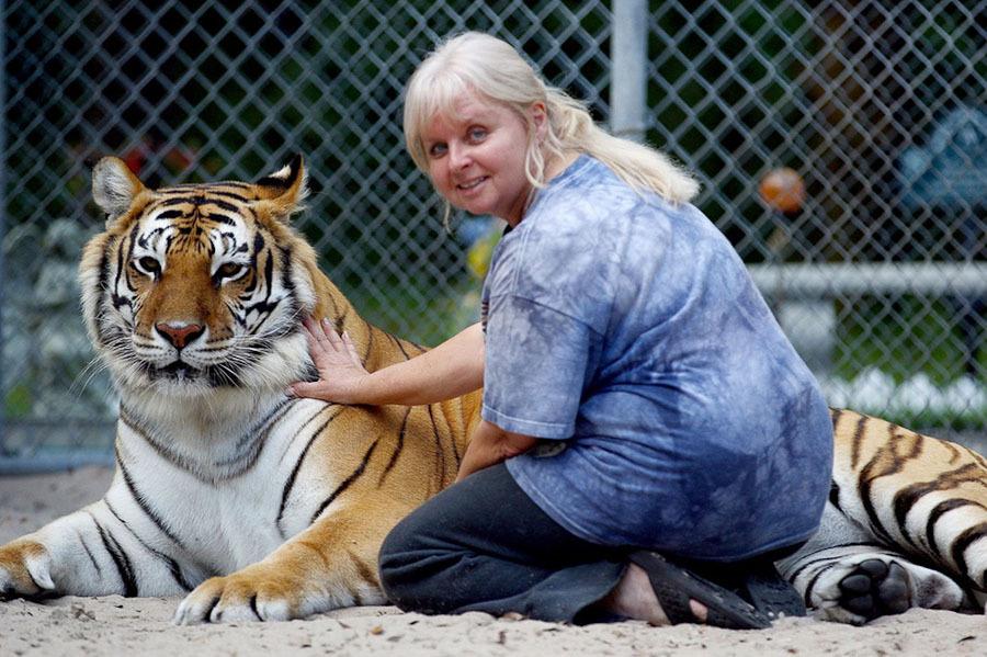 tigri-3