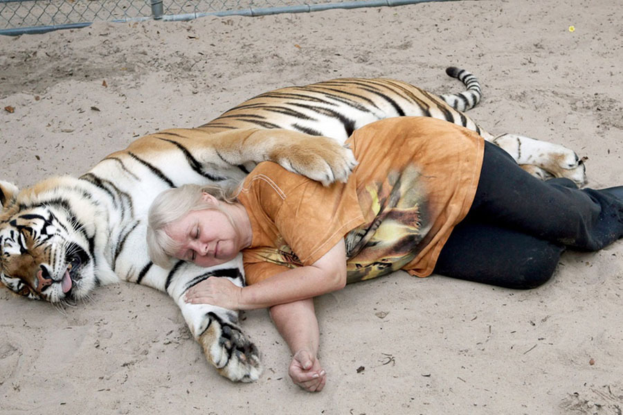 tigri-2