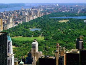 new_york_3